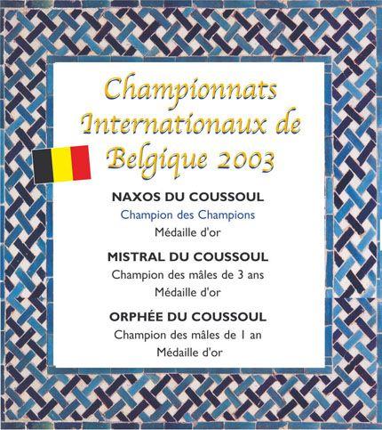 Championnats de Belgique 2003